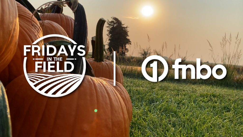 Fall activities at Pekarek's Produce | 2021 Fridays in the Field | Ep. 20
