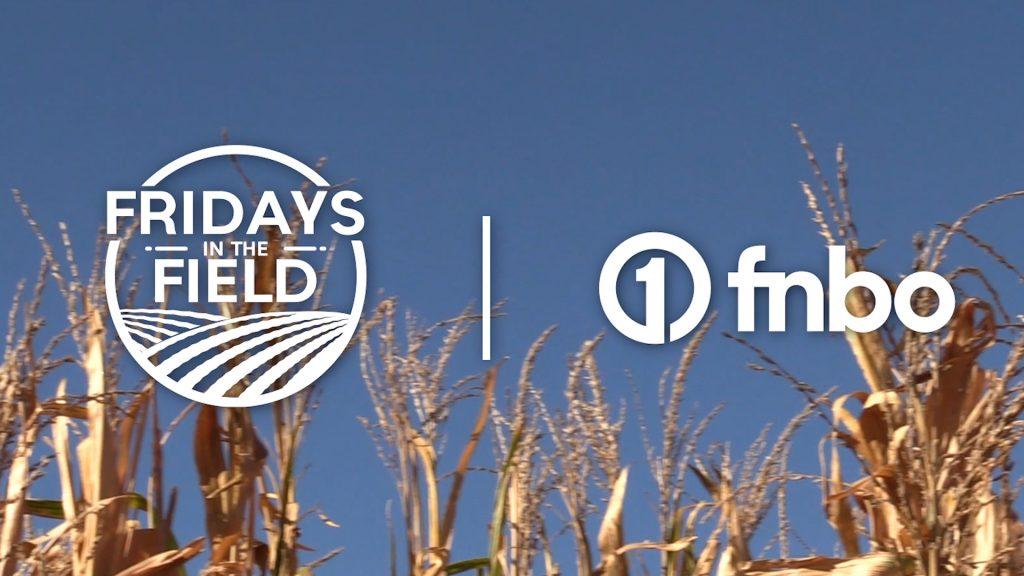 Harvest underway in eastern Nebraska | 2021 Fridays in the Field | Ep. 21