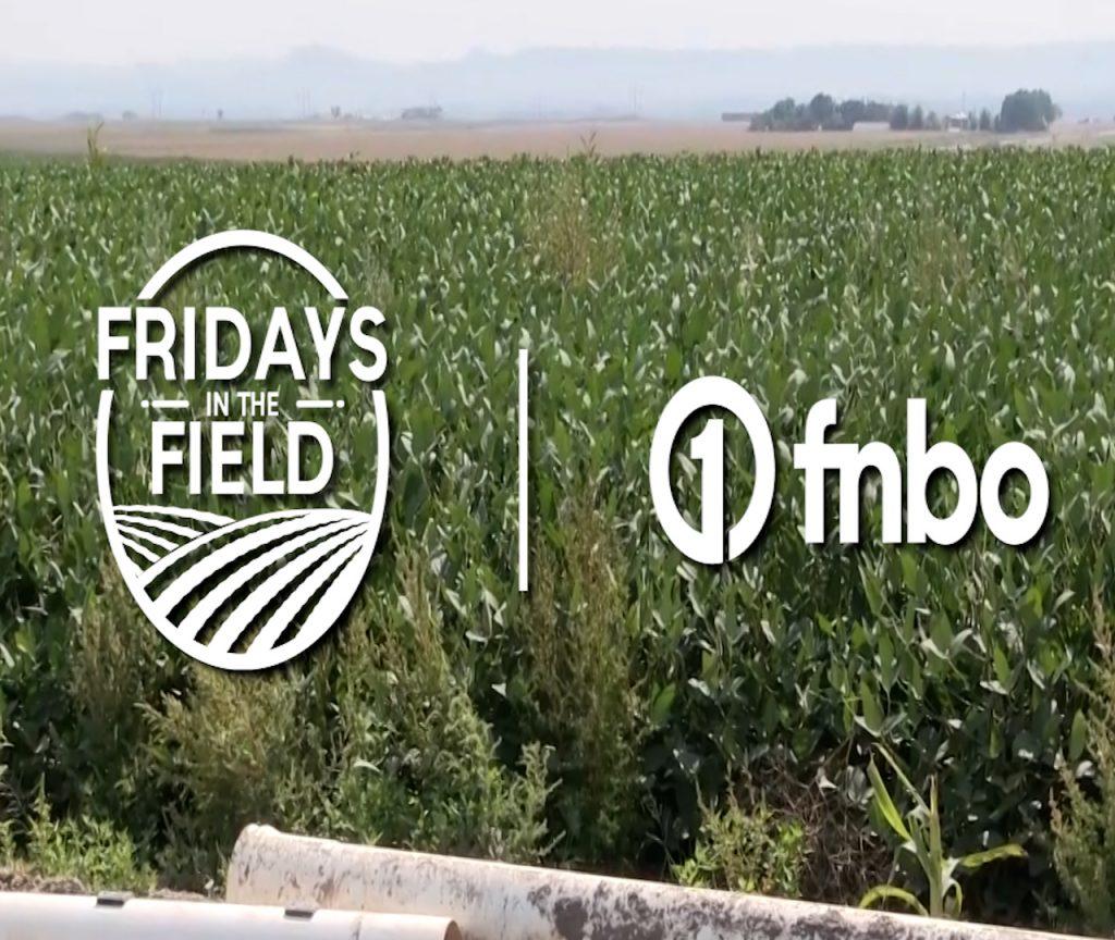 Preparing for early harvest in Western Nebraska | 2021 Fridays in the Field | Ep. 19