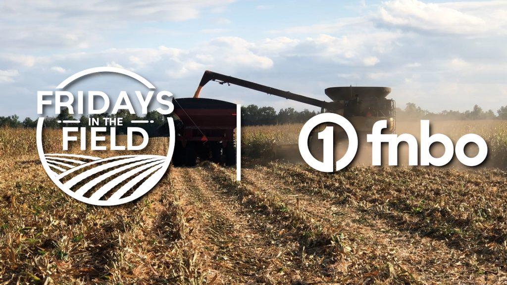 Organic crop harvest underway | 2021 Fridays in the Field | Ep. 23