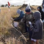 State Land Judging competition challenges youth near Bertrand
