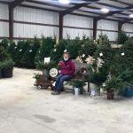 Centennial FFA member sells Christmas trees, decor in community for FFA SAE