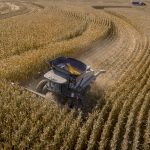 Supply chain crunches affecting agriculture — from farm to table