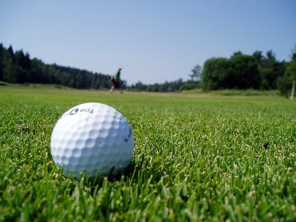 Cadet Girls Golfers Win EHC Title
