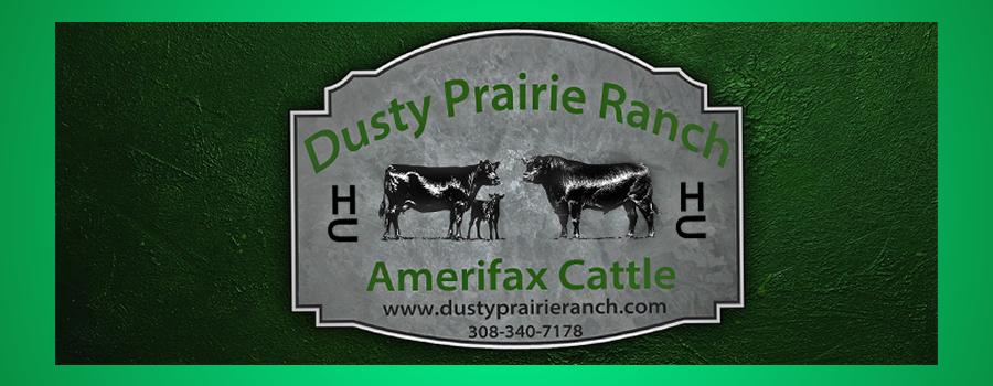 Dusty Prairie Ranch