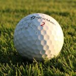Central Conference Boys Golf Results