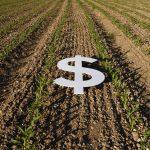 CoBank: U.S. Economy Gaining Momentum