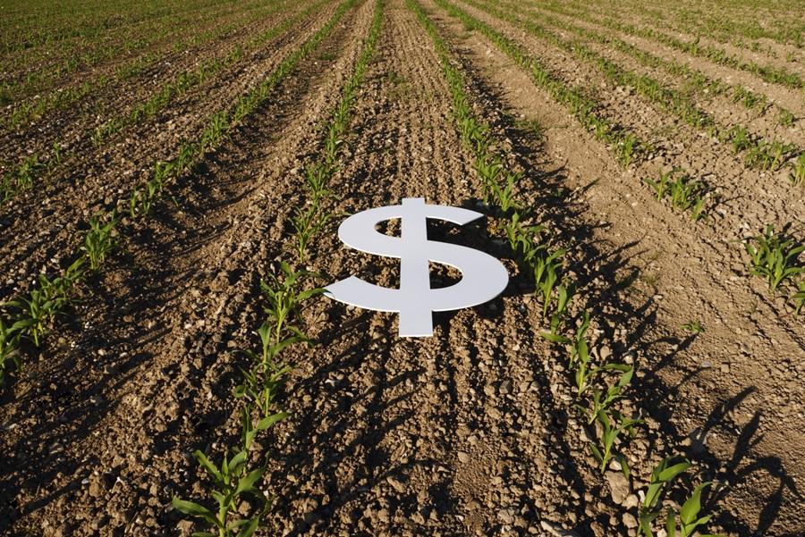 Ag Credit Survey: Farm Economy Rebounds Sharply