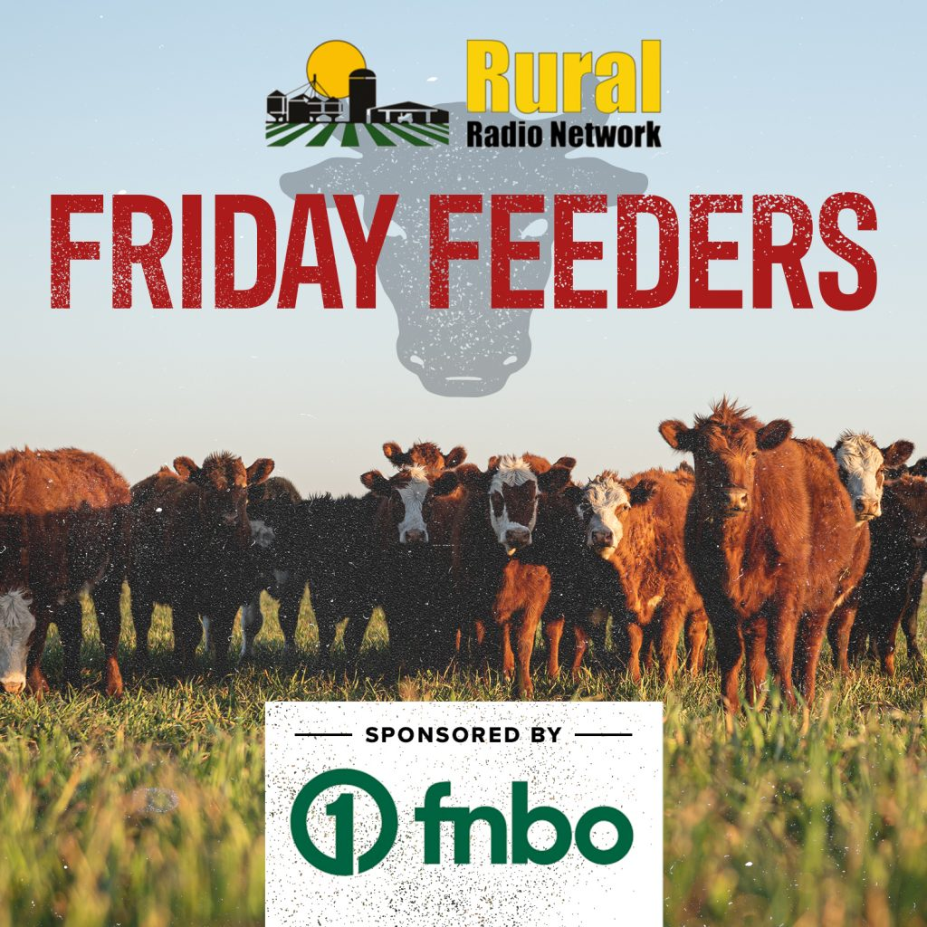 Friday Feeders Roughage & Ready Bulls