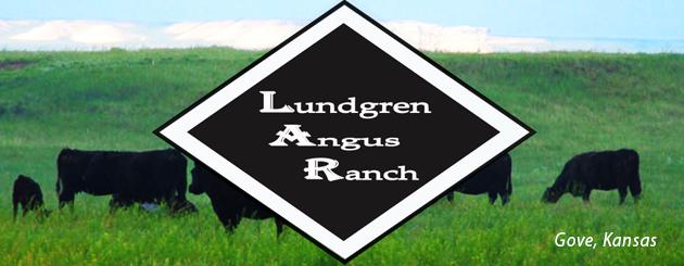 Lundgren Angus Ranch