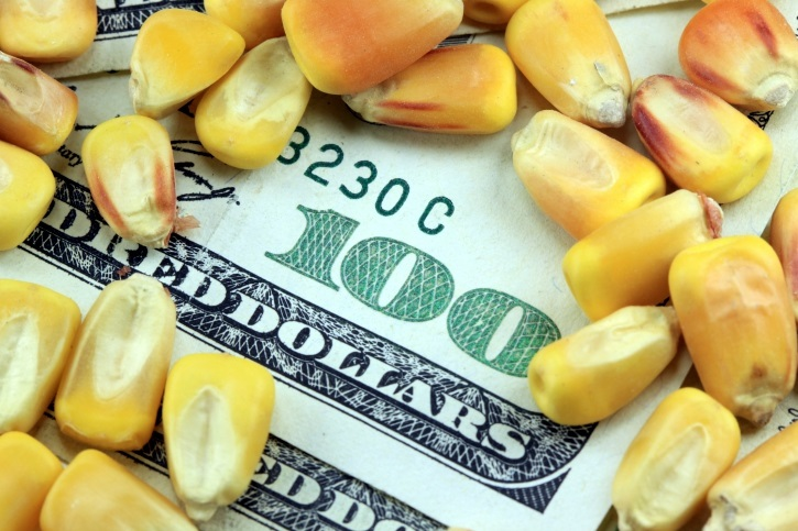 Challenges, Opportunities of High Grain Prices | Agriculture News Update