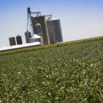 Farmland sales expected to be especially brisk