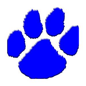 Bearcats Volleyball Coach Steps Down