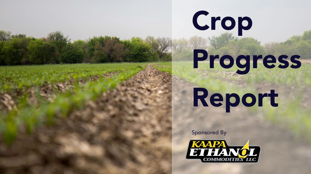 KAAPA Ethanol crop progress report for week of April 19th