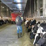 Webinar to explore dairy expansion in Nebraska