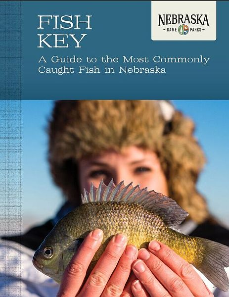 New online resource helps anglers ID fish