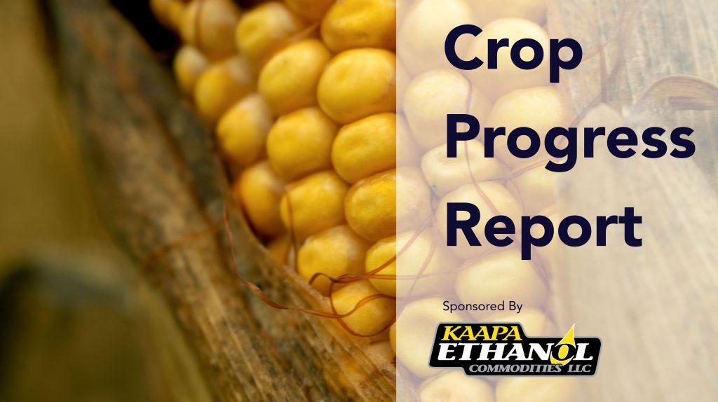 The KAAPA Ethanol Weekly Crop Progress Report for October 12