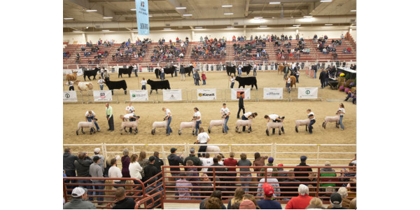 Aksarben Stock Show 2021 to feature Grand Drive