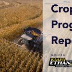 KAAPA Ethanol Weekly Crop Progress Report