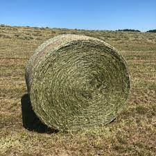For sale Large Round Bales
