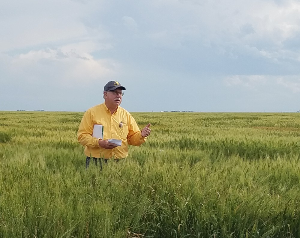 UNL Wheat Breeder Baenziger retires after 30 plus years at Nebraska