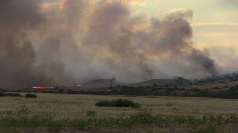 Disaster Declaration Issued for Panhandle Wildfires