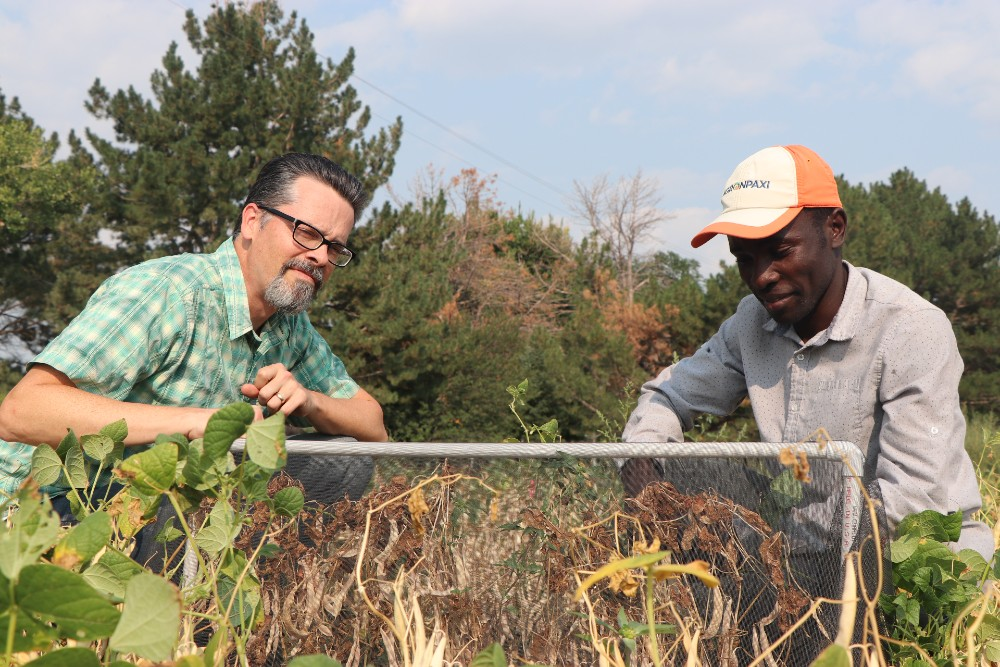 UNL entomologist and intern work together on research and more