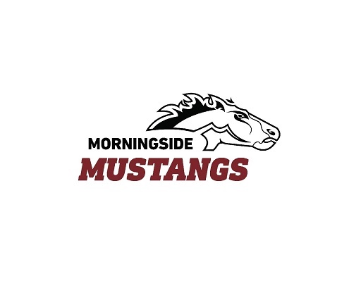 Morningside Volleyball swept by Concordia