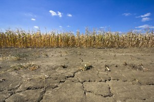 Rain helps, but drought conditions persist in Nebraska