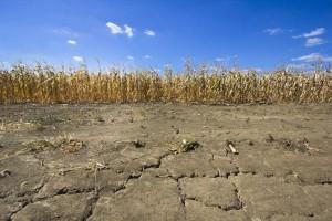 Rain helps, but drought conditions persist in Nebraska
