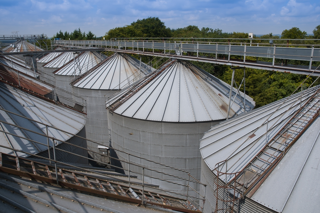 Stored Grain Needs Care as Temperatures Rise