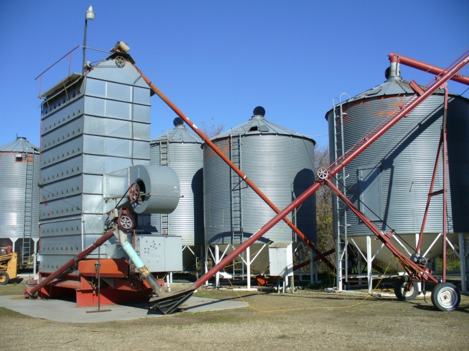 November WASDE holds surprises for US ending grain stocks