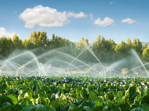 Kansas to Host Central Plains Irrigation Conference Feb. 17-18