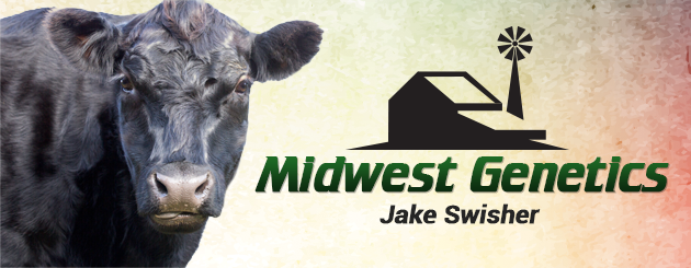 krvngraphics_Cattleman_MidwestGenetics-Slider