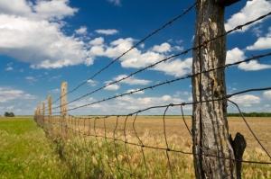 Blew Partnership Wins  Regional Environmental Stewardship Award