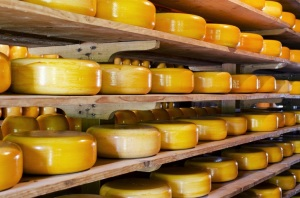 CME Group to Launch Block Cheese Futures and Options