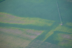 Accounting for Risk: Agricultural Land Leases and Natural Disasters