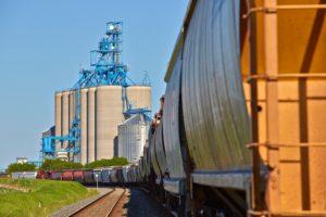 Grain Glitch Could Cost Farmers, Cooperatives Money