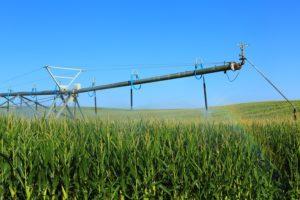 NCGA relaying farmers input on Ag Innovation Agenda direction