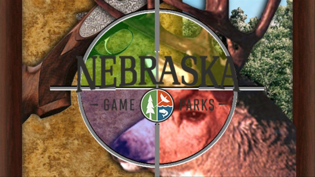 Nebraska Game & Parks to host a free virtual pre-K program: Nature Tails