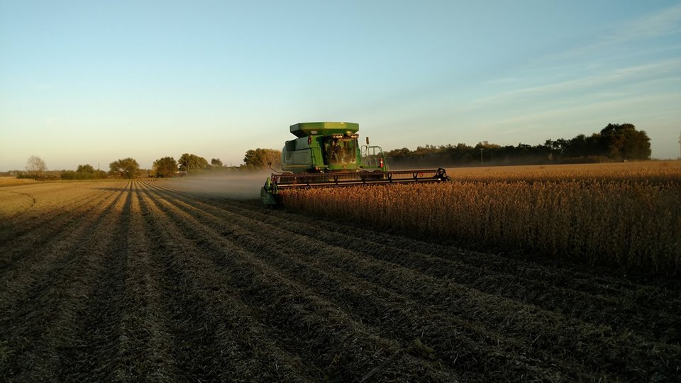 Another Private Yield Forecast Predicts Record Crop