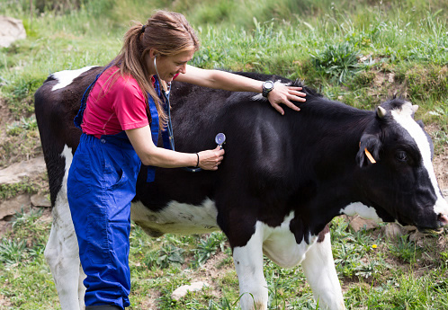 Next Generation of Veterinarians is High Priority for USAHA