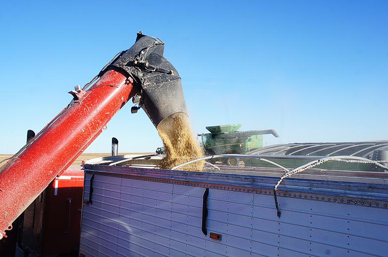 SREs hurt biodiesel as much as ethanol