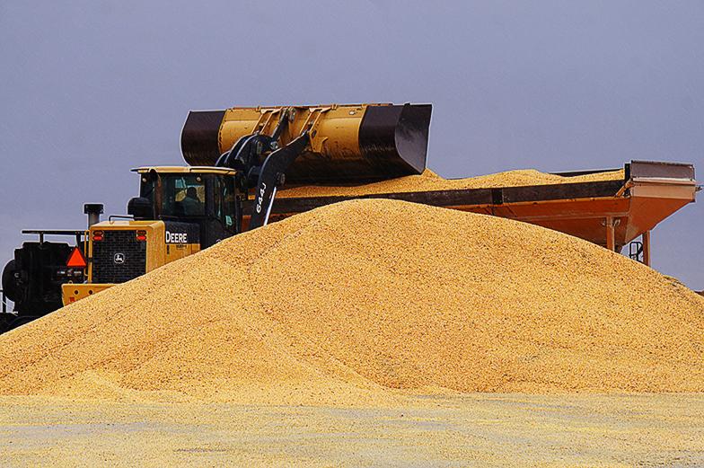 USDA Bumps Corn Yield, Soybean Production