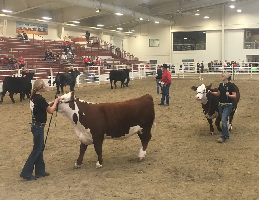 (Audio) Nebraska 4-H prepares for State Fair