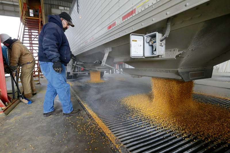 Corn harvest now under way in Kansas