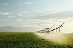 Farmers Using Less Water to Irrigate