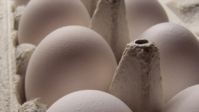 USDA Announces Egg Product Inspection Modernization Effort