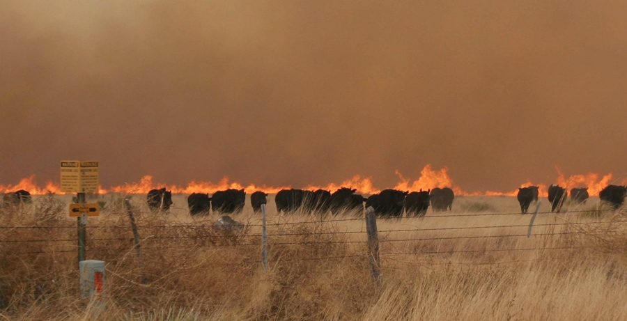 Wildfire Awareness Week reminds Kansans to remain vigilant as wildfire season approaches