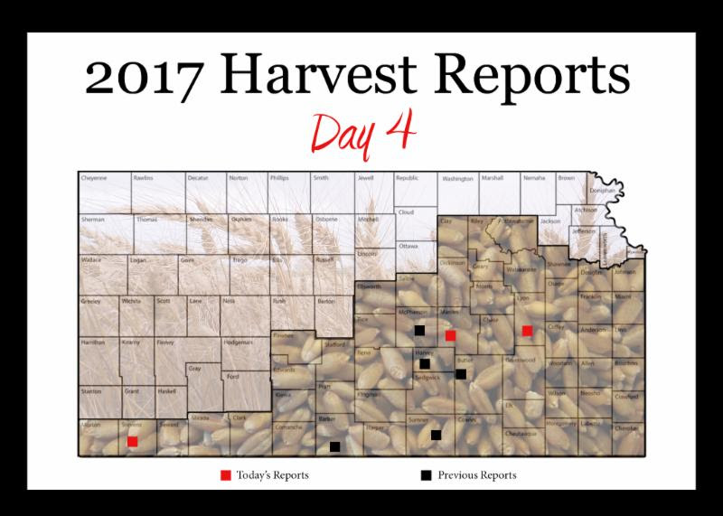 Day 4, Kansas Wheat Harvest Report